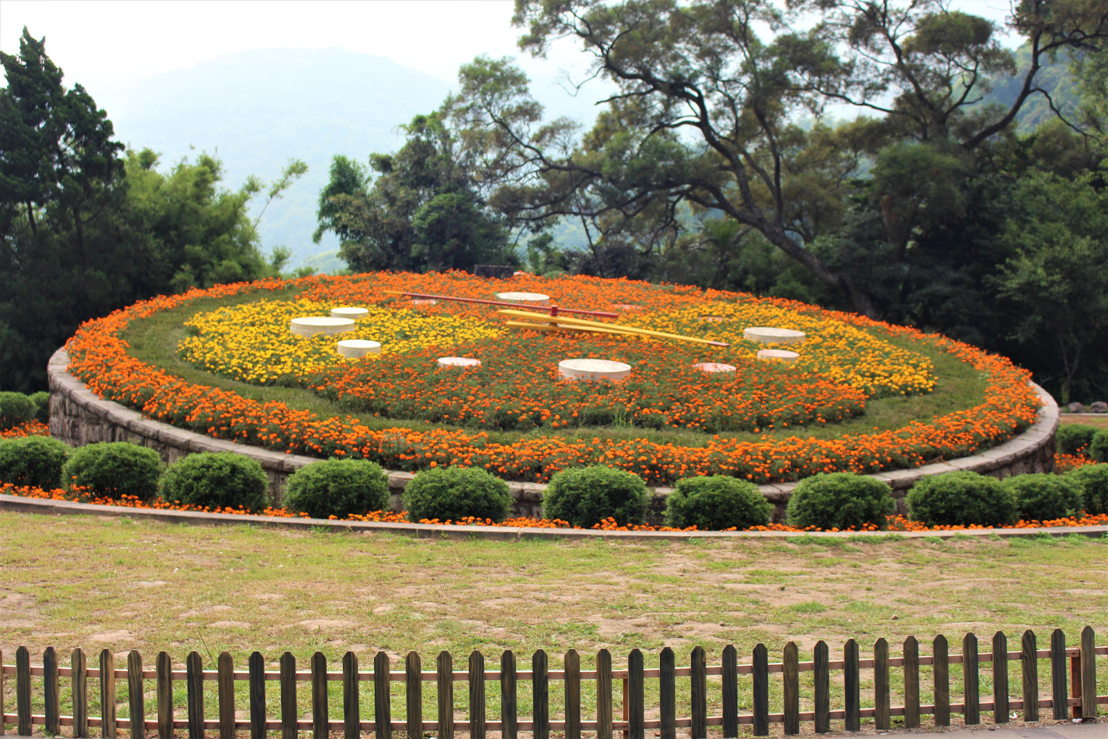 Yangming Park Flower Clock (陽明公園花鐘) – The Yangmingshan Flower ...